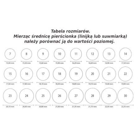 25 Rocznica Ślubu - ramka srebrna na zdjęcie.